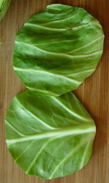 cabbage_leaves