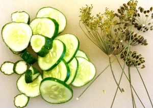 Dill Pickle Tonic