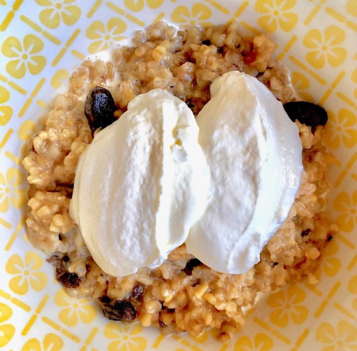 Steel Cut Oat Breakfast with Yogurt
