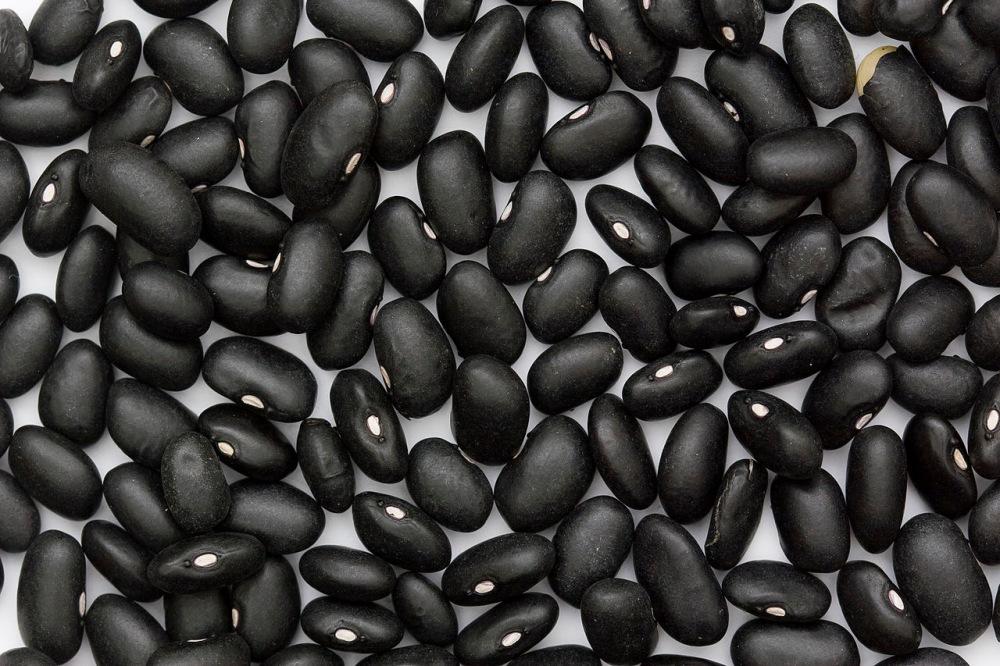 1280px-Black_Turtle_Bean